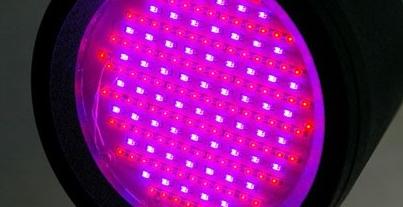 ultraibolya lámpa pikkelysömör kezelésére vélemények kenőcs pikkelysömörhöz az arc kezén