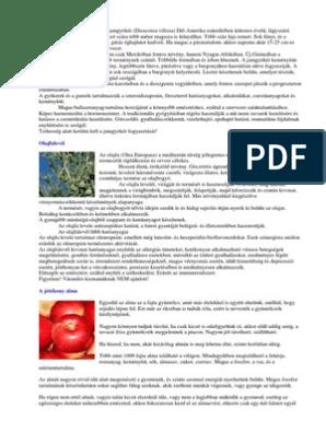 A torokrák első tünetei + a tünetek árnyalatai, típustól függően - Tracheitis