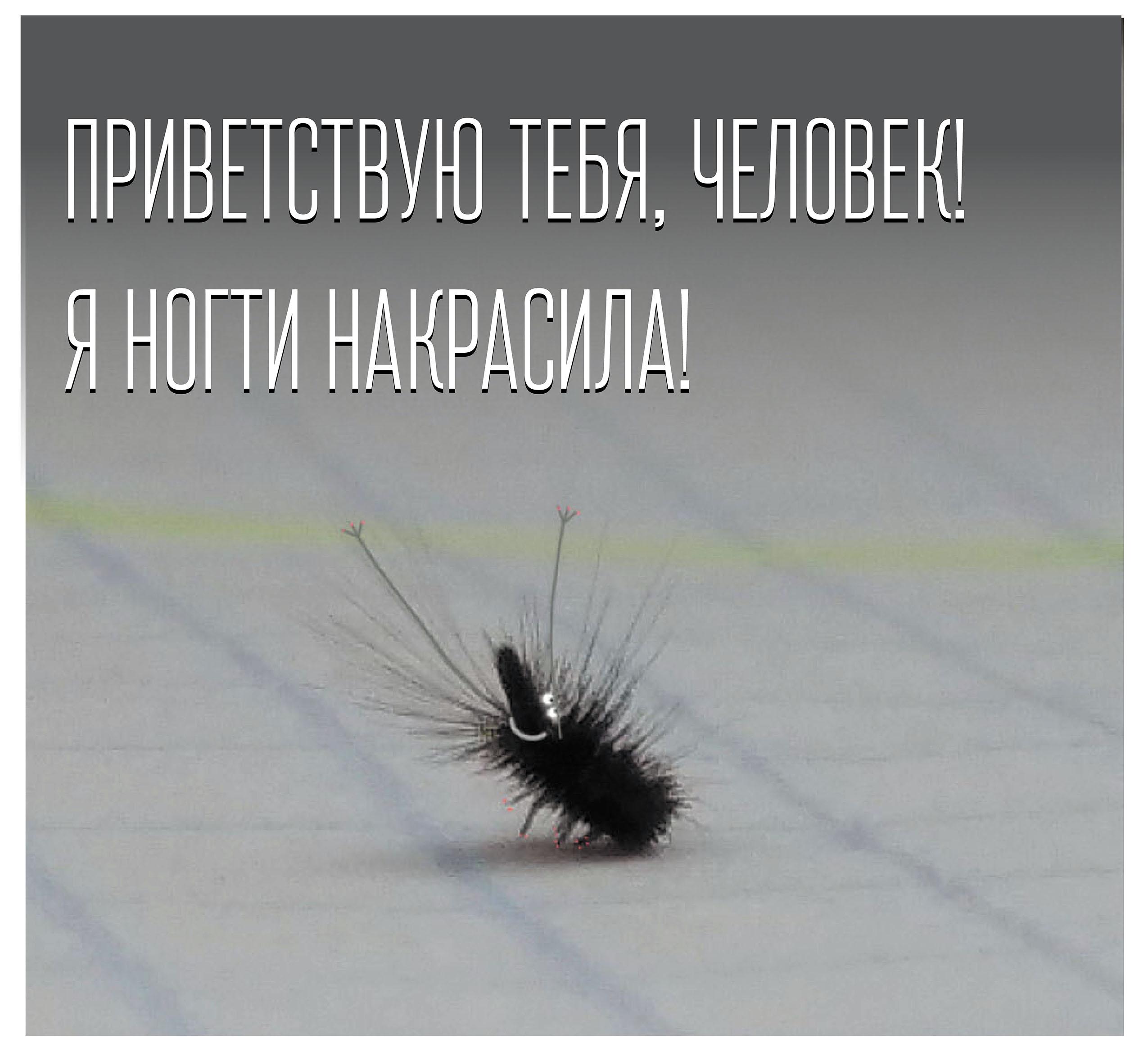 Aromatika__kriko.hu